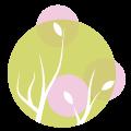 Seelenberuehrung im jetzt Logo
